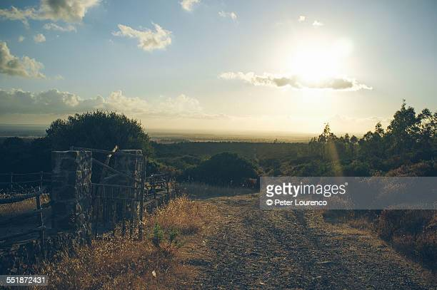 rural dirt path - peter lourenco stock pictures, royalty-free photos & images
