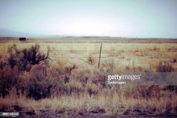 rural eastern oregon - tumbleweed stock photos and pictures