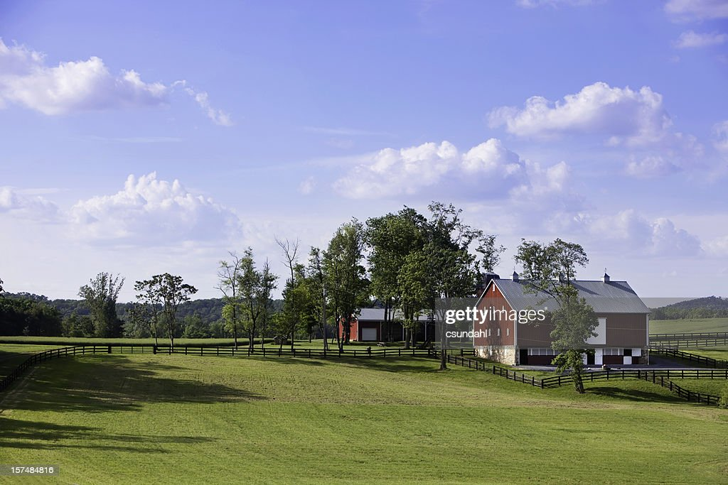 Rural farm house in the middle of a field : Stock Photo