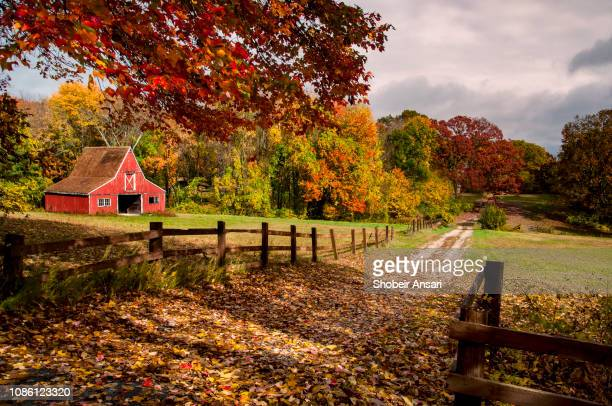 rural farm in autumn, new england, usa - connecticut - fotografias e filmes do acervo