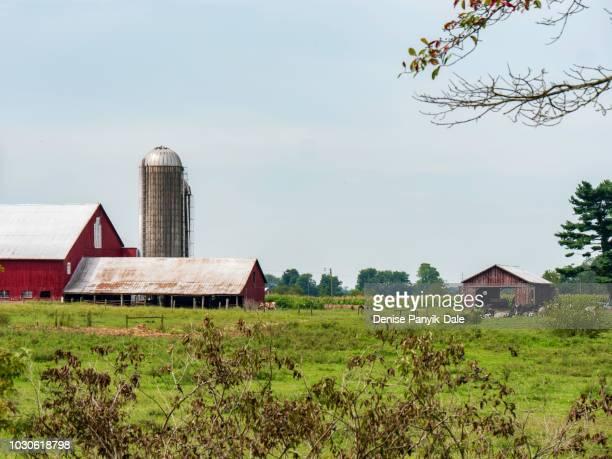 rural farm in pennsylvania - panyik-dale stock photos and pictures