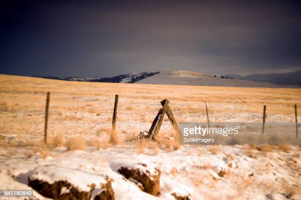 Rural fence and agricultural land, Western USA