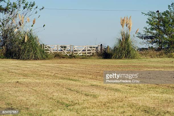 rural field with rustic fence - pampa stock-fotos und bilder