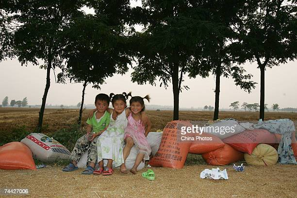 Rural girls sit on woven bags of wheat in a field on June 5 2007 in the outskirts of Taihe County of Fuyang Anhui Province ChinaIn its monthly update...