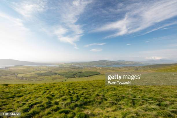 rural irish landscape near kerry cliffs portmagee, ireland - idyllic stock pictures, royalty-free photos & images