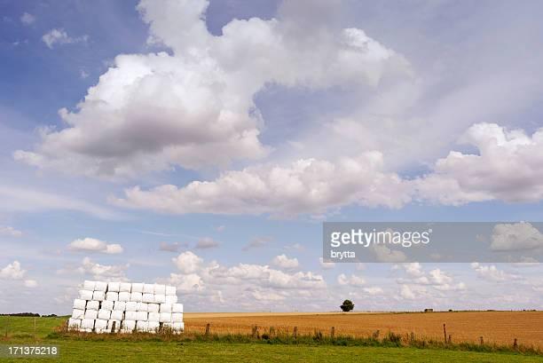 田園風景の後に、ハーベスト、ベルギーフランダース - フラームスブラーバント ストックフォトと画像