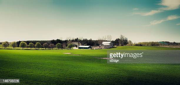 Rural landscape and farmhouse