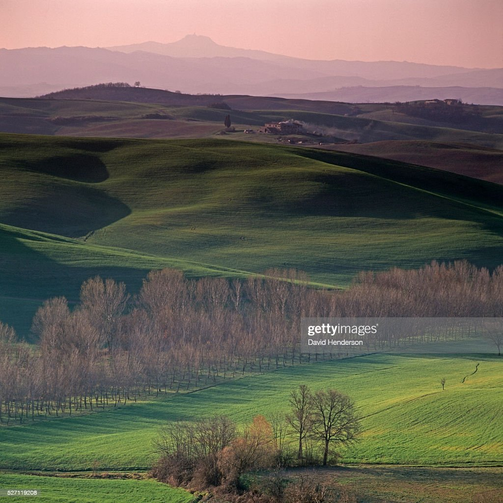 Rural landscape at dawn : Foto de stock