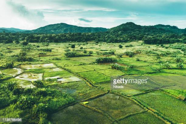 rural landscape in malawi, africa - malawi stock pictures, royalty-free photos & images