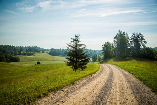 Rural landscape, in summer, Talsi, Latvia