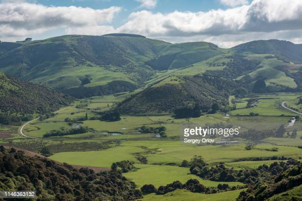 rural landscape in tawanui, new zealand - otago stock pictures, royalty-free photos & images