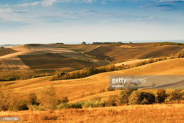 rural landscape in the marches - emilia romagna stock pictures, royalty-free photos & images