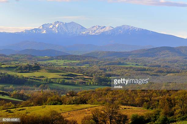 Rural landscape in the PrePyrenees near Pamiers in the Ariege department cultivated fields wooded area and Pyrenean mountain range