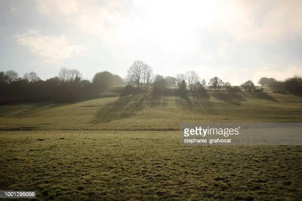 Rural landscape, Normandy, France