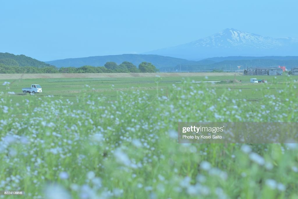 Rural landscape of Akita Japan : Stock Photo