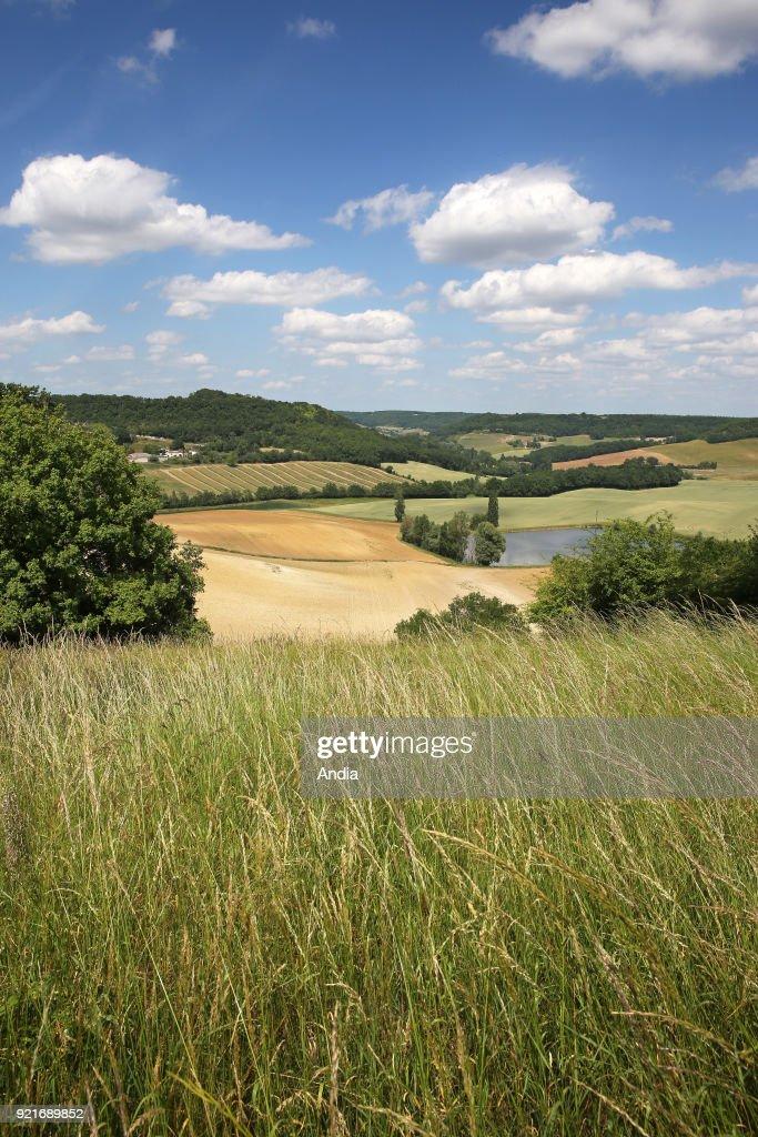 Rural landscape of the Lot-et-Garonne department, in the area called 'Pays de Serres'.