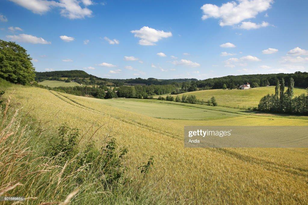 Rural landscape of the Lot-et-Garonne department. : News Photo