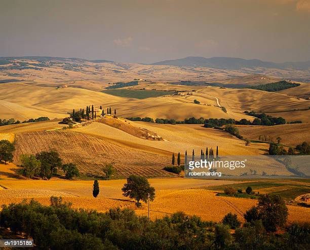rural landscape of tuscany, italy - travel14 stock pictures, royalty-free photos & images