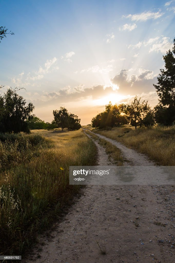 rural landscape : Stock Photo