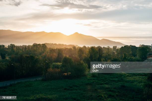 Rural landscape, Pisa, Tuscany, Italy