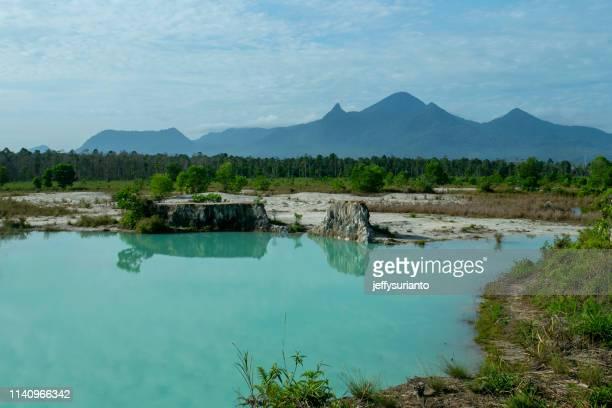 rural landscape, pontianak, west borneo - west kalimantan stock pictures, royalty-free photos & images