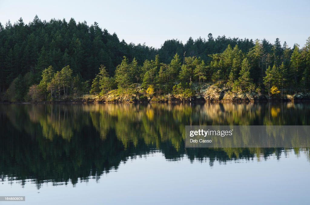 Rural landscape reflected in still lake : Stock Photo