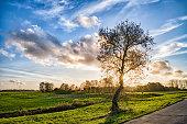 rural landscape tergast leer lower saxony