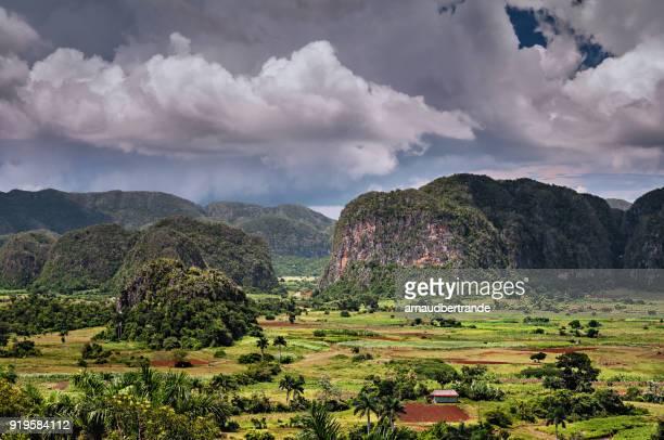 rural landscape, vinales, pinar del rio, cuba - valle de vinales stock-fotos und bilder