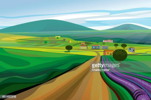 Rural Landscape with Dirt Road, fields and Lavender Farm