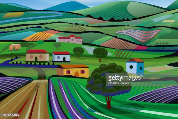 Rural Landscape with Dirt Road, fields and Lavender Farms