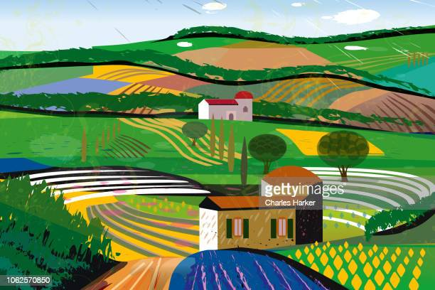 Rural Landscape with farm house, barn, fields, farms with crop rows