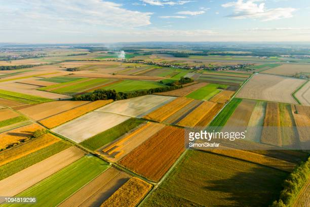 rural landscape with field patchwork - slovenia stock pictures, royalty-free photos & images