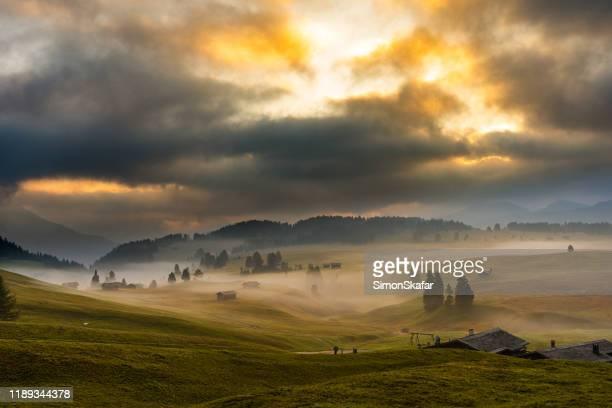 landsbygdslandskap med fält, träd och böljande kullar vid sunrise, dolomiterna, italien - alto adige bildbanksfoton och bilder
