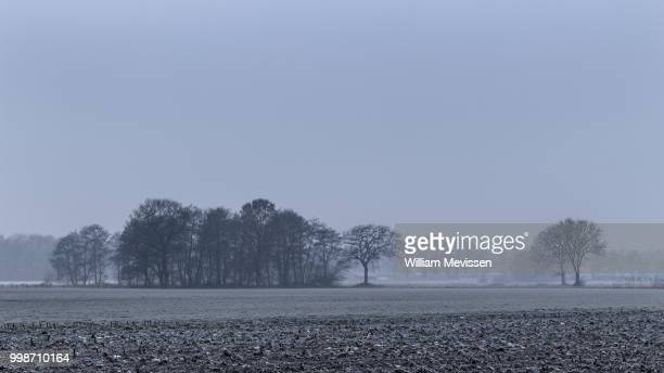 rural mist - william mevissen stock pictures, royalty-free photos & images
