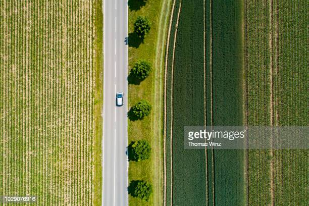rural road and green fields - baden württemberg stock pictures, royalty-free photos & images