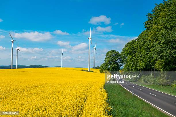 rural road and wind turbines in canola field - land vehicle stock pictures, royalty-free photos & images