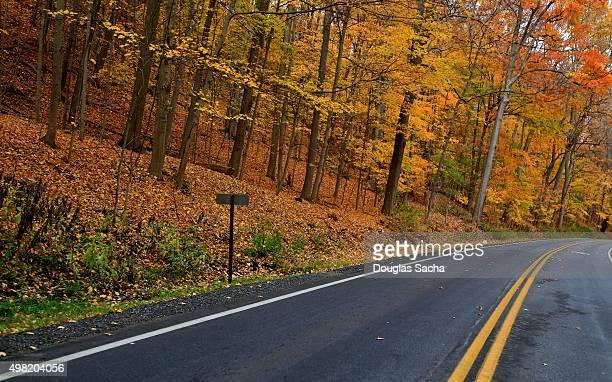 Rural road in autumn season