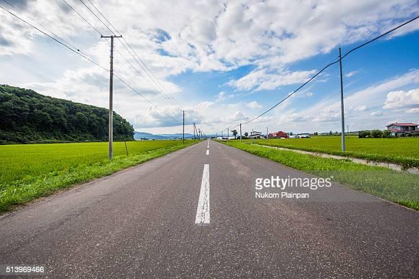 Rural road in Hokkaido,Japan