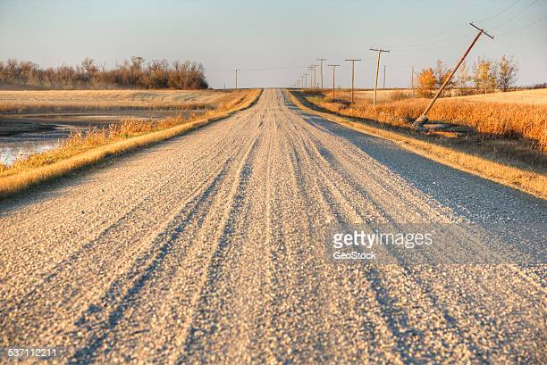 a rural road in the canadian prairies - canadian prairies stock photos and pictures
