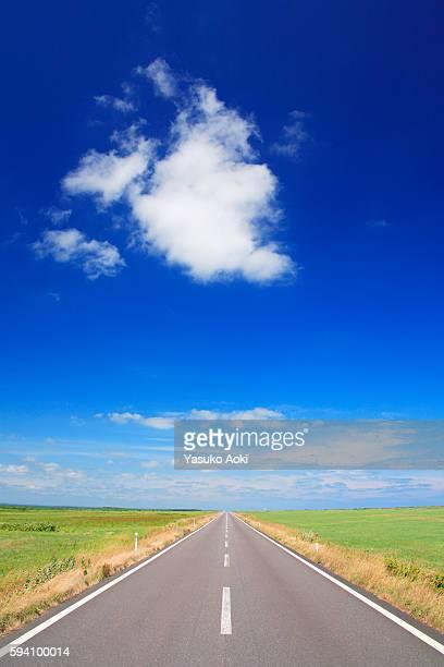 Rural Road Through Fields