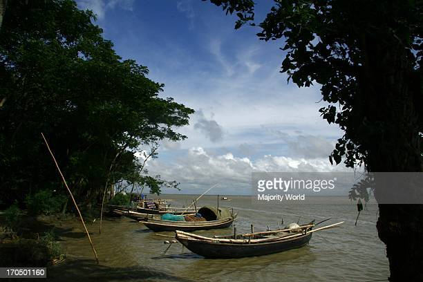 A rural scene by the side of the Padma river in Mawa in Dhaka Bangladesh July 10 2009