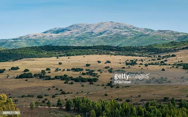 rural scene in maldonado, uruguay - hügelkette stock-fotos und bilder