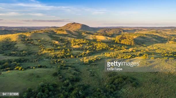 rural scene in rocha department, near rocha city, uruguay - uruguay stockfoto's en -beelden