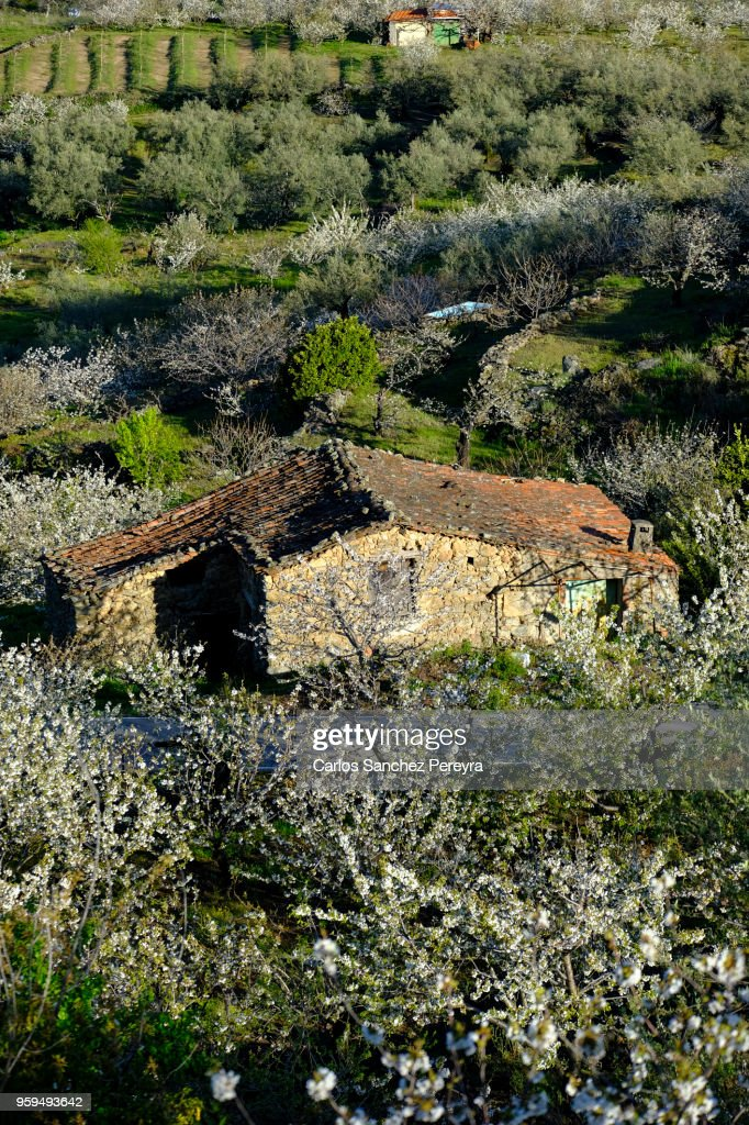 Rural scene in Spain : Stock Photo