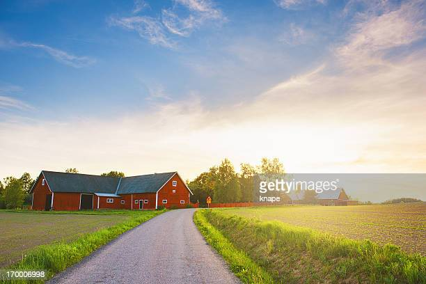rural scene in sweden - farmhouse stock pictures, royalty-free photos & images