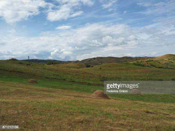 Rural Scene With Haystacks And Green Pastures In Central Romania