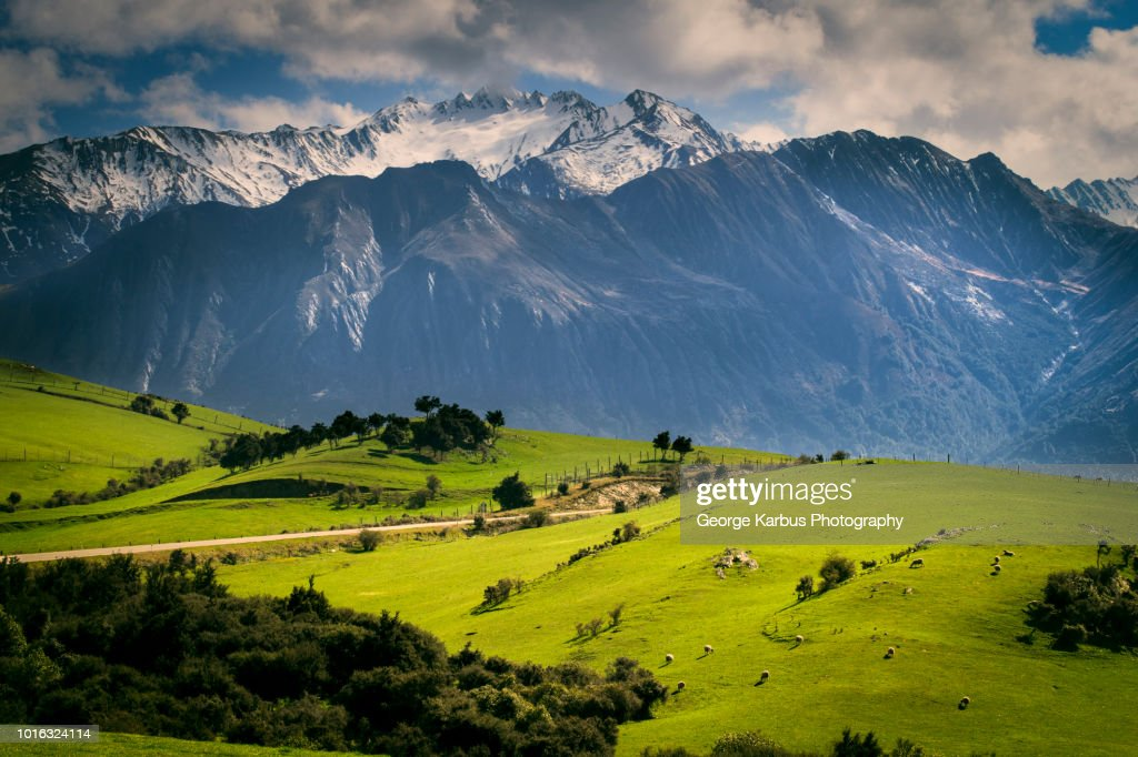Rural scene with mountains behind, Kaikoura, Gisborne, New Zealand : Stock Photo