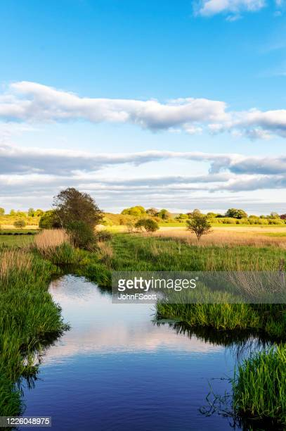rural scottish scene of a small river in the early evening. - johnfscott stock pictures, royalty-free photos & images