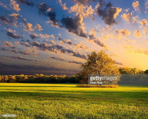 Rural Texas Autumn Sunset