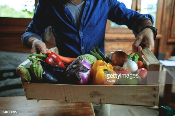 rural vegetable garden products at display - stagione foto e immagini stock